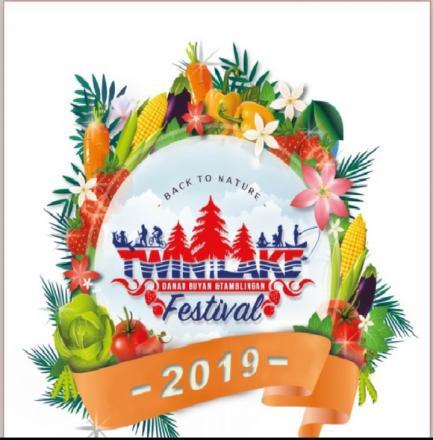 Twin Lake Festival 2019